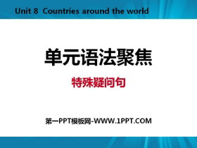 《单元语法聚焦》Countries around the World PPT