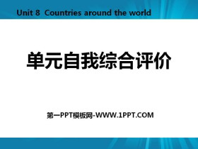 《单元自我综合评价》Countries around the World PPT