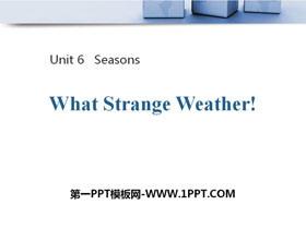 《What Strange Weather!》Seasons PPT教学课件