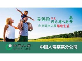 中国人寿保险业务介绍龙8官方网站