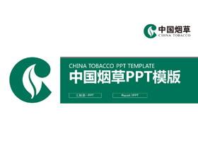 ���中����草PPT模板
