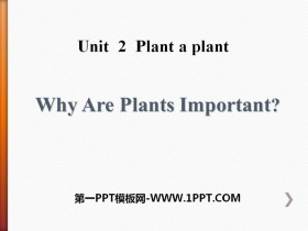《Why Are Plants Important?》Plant a Plant PPT