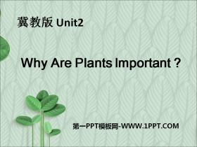 《Why Are Plants Important?》Plant a Plant PPT�n件