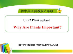 《Why Are Plants Important?》Plant a Plant PPT下�d