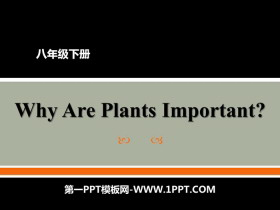 《Why Are Plants Important?》Plant a Plant PPT教�W�n件