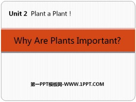 《Why Are Plants Important?》Plant a Plant PPT免�M�n件