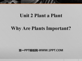《Why Are Plants Important?》Plant a Plant PPT免�M下�d