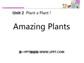 《Amazing Plants》Plant a Plant PPT课件下载
