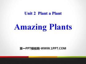 《Amazing Plants》Plant a Plant PPT免�M�n件