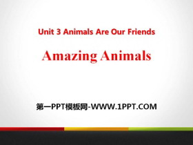 《Amazing Animals》Animals Are Our Friends PPT课件tt娱乐官网平台