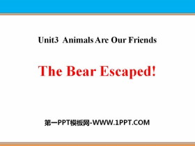 《The Bear Escaped!》Animals Are Our Friends PPT课件
