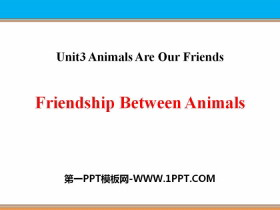 《Friendship Between Animals》Animals Are Our Friends PPT�n件
