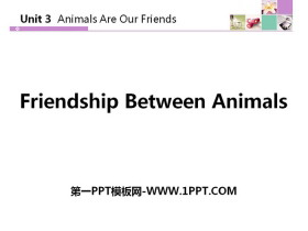 《Friendship Between Animals》Animals Are Our Friends PPT教�W�n件