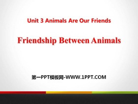 《Friendship Between Animals》Animals Are Our Friends PPT�n件下�d