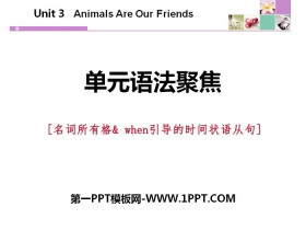 《单元语法聚焦》Animals Are Our Friends PPT