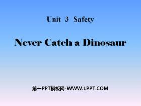 《Never Catch a Dinosaur》Safety PPT课件