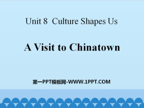 《A Visit to Chinatown》Culture Shapes Us PPT