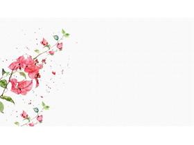 ������水彩花卉植物PPT背景�D片
