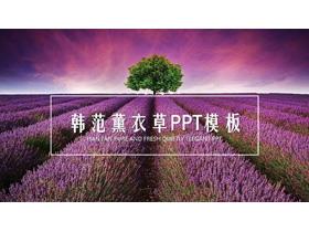 紫色薰衣草背景PPT模板免�M下�d