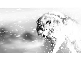 四张黑白素描绘制的狼PPT背景图片