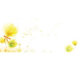 三张彩色水彩手绘花卉PPT背景图片