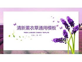 清新薰衣草背景的卡片样式龙8官方网站