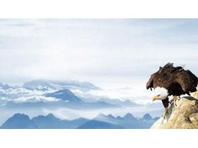 老鹰群山PPT背景图片
