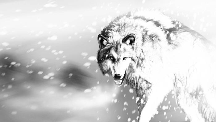 四��黑白素描�L制的狼PPT背景�D片