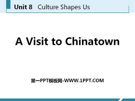 《A Visit to Chinatown》Culture Shapes Us PPT下载
