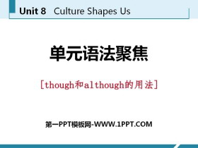 《单元语法聚焦》Culture Shapes Us PPT
