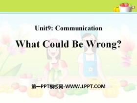 《What Could Be Wrong?》Communication PPT课件