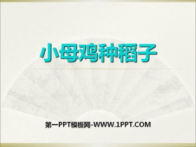 《小母鸡种稻子》PPTtt娱乐官网平台