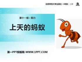 《上天的蚂蚁》PPT