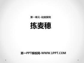《拣麦穗》PPTtt娱乐官网平台