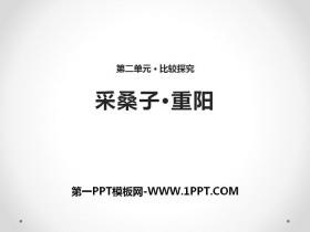 《采桑子・重阳》PPT