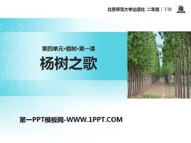 《杨树之歌》PPT