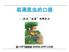 《装满昆虫的口袋》PPT