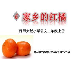 《家乡的红橘》PPT下载