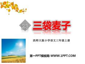 《三袋麦子》PPT下载