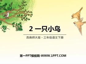 《一只小鸟》PPT课件下载
