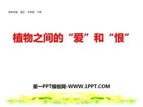 """《植物之间的""""爱""""和""""恨""""》PPT"""