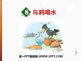 《乌鸦喝水》PPT优质课件