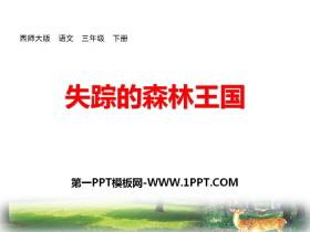 《失踪的森林王国》PPT下载