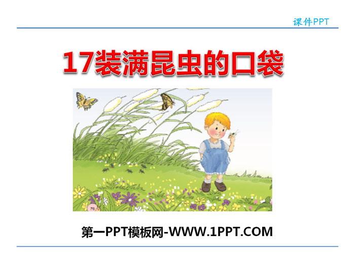 《装满昆虫的口袋》PPT教学课件