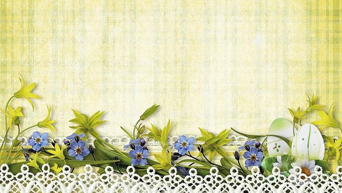 清新花卉鲜花花边PPT背景图片