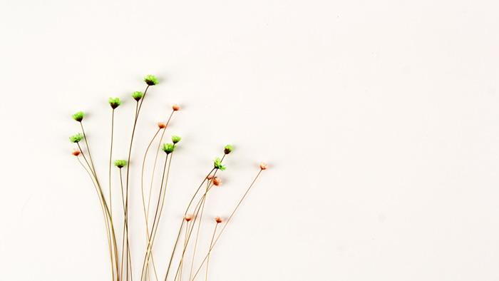 六张简约清新花束PPT背景图片