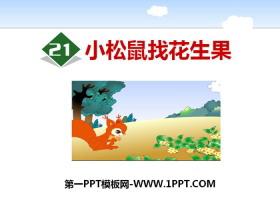 《小松鼠找花生果》PPT下载
