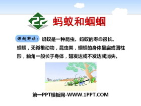 《蚂蚁和蝈蝈》PPT下载
