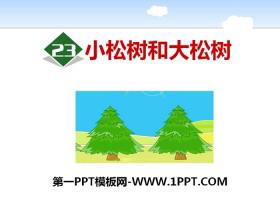 《小松树和大松树》PPT