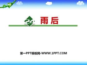 《雨后》PPT优质课件